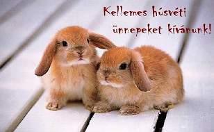 7185c4a5fc Az alábbi néhány sorral szeretnénk minden kedves olvasónknak áldott, szép  húsvéti ünnepeket kívánni. Húsvét hétfőn pedig a lányoknak sok locsolót!